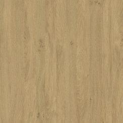 5527 Stejar Piatra
